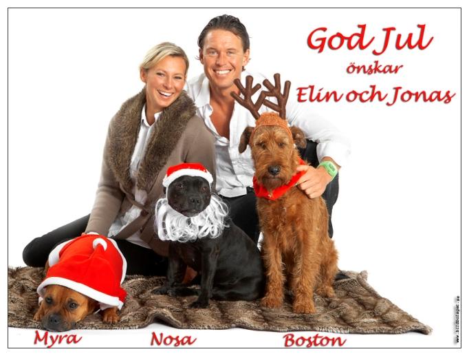 Grattis på julafton!