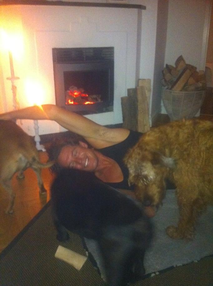 Mys med hundarna