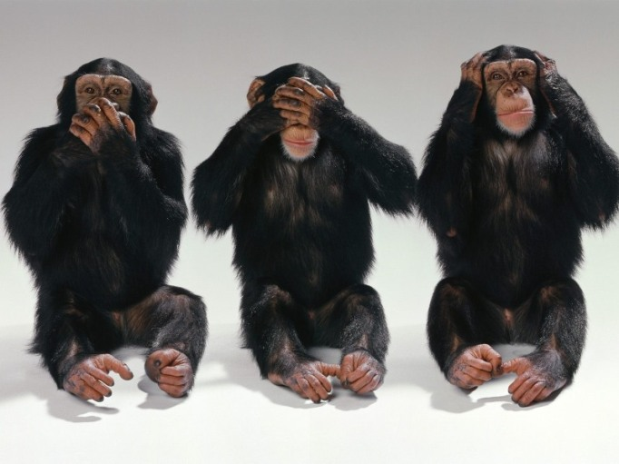 see no evil, hear no evil, do no evil